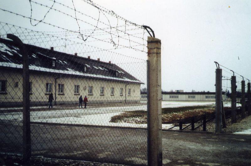 Dachau wires